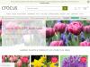crocus.co.uk coupons